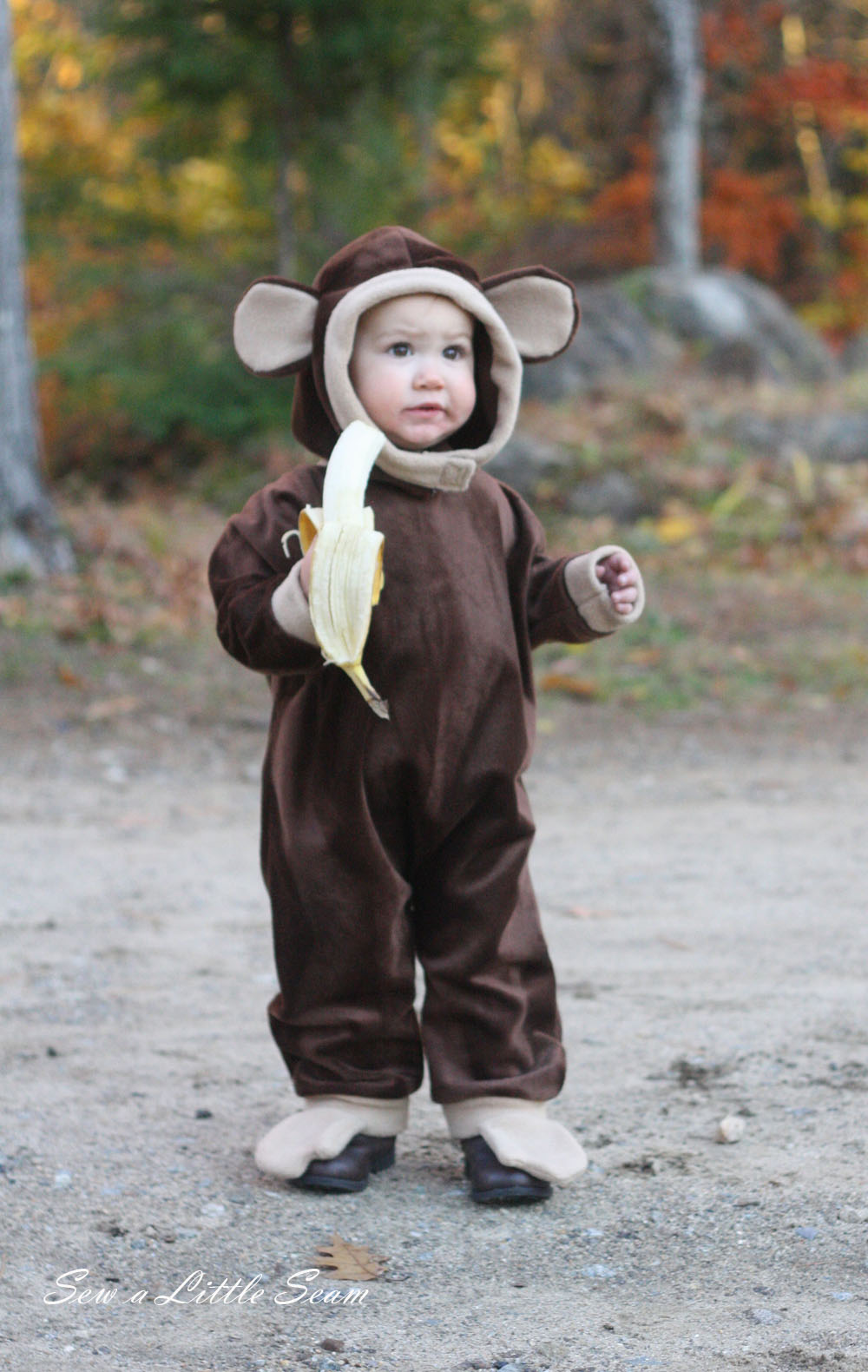 This free animal costume comes in size 2T. It includes piece to make a puppy or a monkey, but you could experiment and make a variety of costumes! You can find the tutorial here.